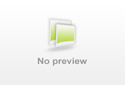 Vogel foto: Chloris chloris / Groenling / European Greenfinch